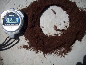 Natural slug repellent that WORKED: New Coffee